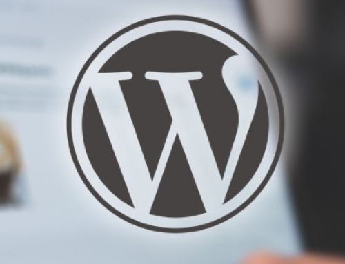 Projects Using WordPress Development
